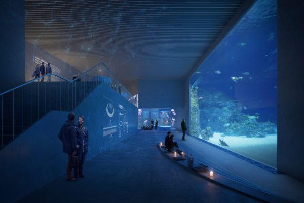 Aquarium_3XN_and_GERNER_GERNER_PLUS_View_04_Int_01_c_3XN
